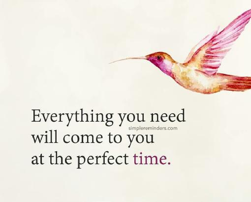 Everything you need will come to you at the perfect time